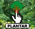 Cadastre-se, click e plante uma muda de árvore