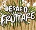 Desafio Fruttare