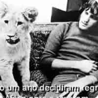 Vídeo: Christian, o Leão Amigo! *_*